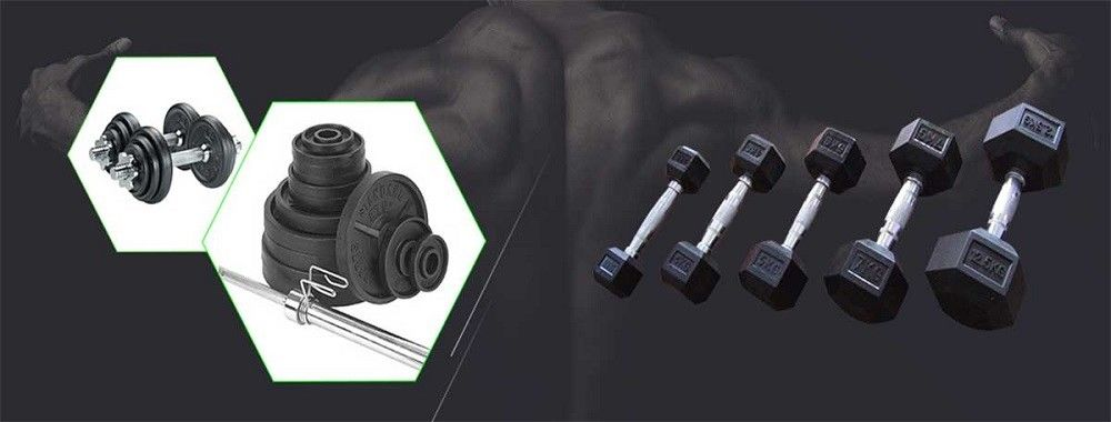 China best Fitness Equipment Barbells on sales