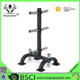 Powder Coated Surface Gym Weight Tree , Gym Equipment Rack For Weight Plate